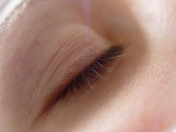 Veronoka Auge